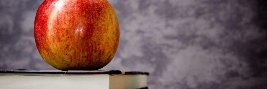 Ein Bildungssystem für das 21. Jahrhundert